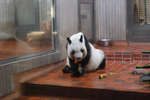 Zoo_0012