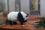 Zoo_0013